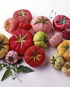 """Homegrown"" Pincushions tomate"