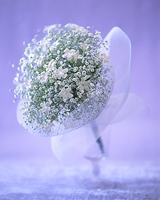 Creamy, Frothy, Snowy White Bouquets: Dainty Nosegays
