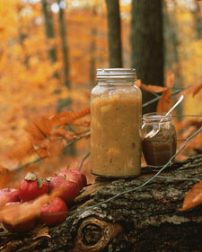 Image of Apple Butter, Martha Stewart